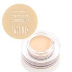 TONYMOLY Face Mix Cover Pot Concealer 4g korean cosmetic makeup product online shop malaysia india usa