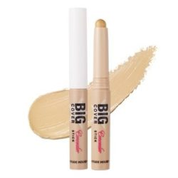 Etude House Big Cover Stick Concealer 2g korean cosmetic makeup malaysia singapore brunei philippine
