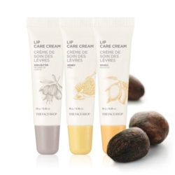 The Face Shop Lip Care Cream 10g korean cosmetic skincare shop malaysia singapore indonesia