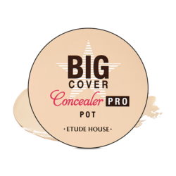 Etude House Big Cover Concealer PRO Pot 4g korean cosmetic skincare shop malaysia singapore indonesia