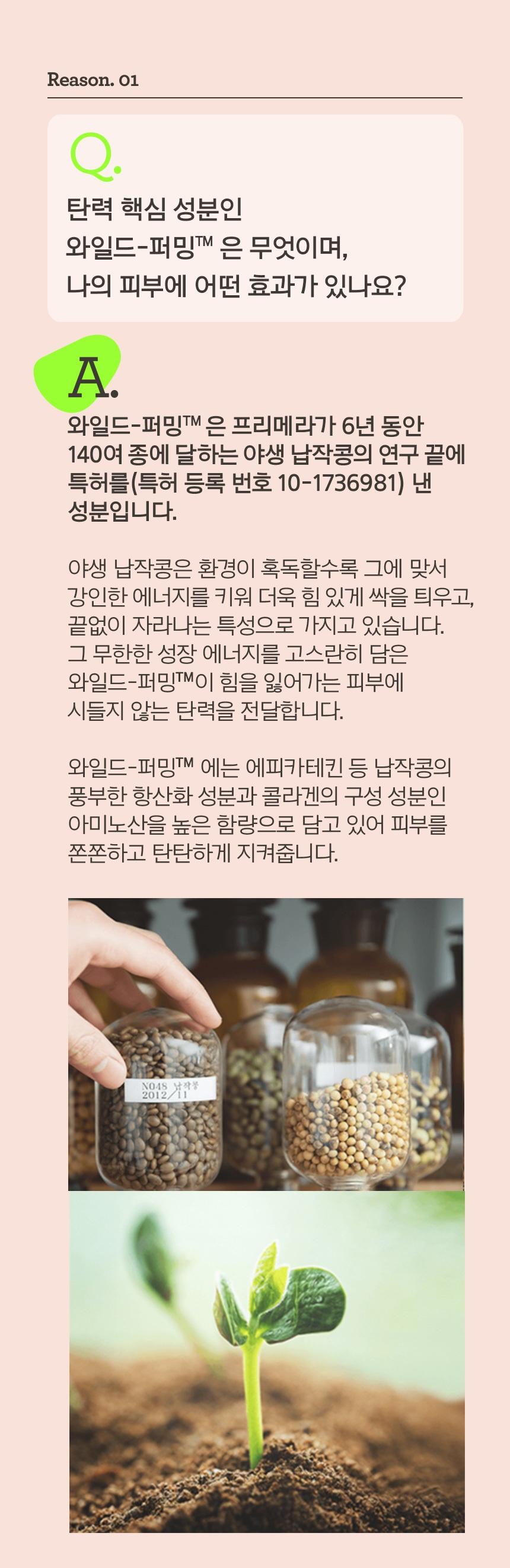 primera Wild Seed Firming Emulsion korean skincare prduct online shop malaysia sweden macau2